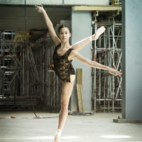 Contracts and apprenticeships for our dancers