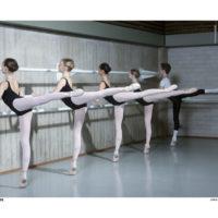 Dans audities jongens en meisjes groep 4, 5, 6, 7 of 8 van de basisschool