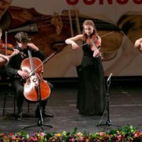 Violist Maxime Gulikers winnaar vioolbeurs Kersjes Fonds